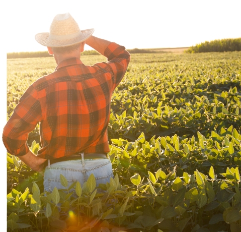 Meet Your U S  Soybean Farmers | Soy Connection