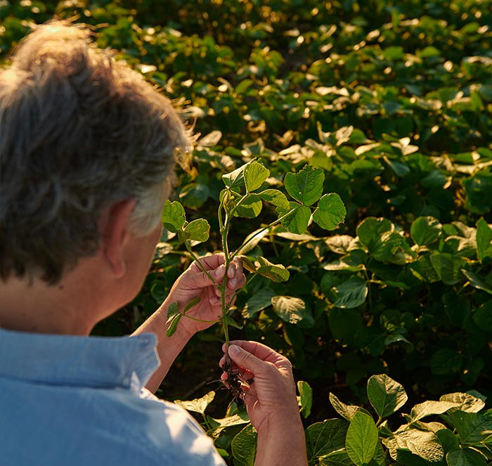 New-Farmer-Image_U.S.-Grown-Page_v3